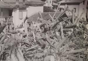 Tronchi alluvione Caprile