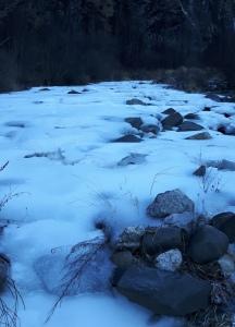 torrente-fiorentina
